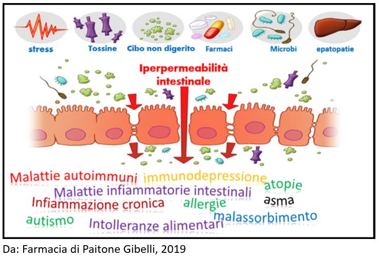 Fattori di rischio per il microbiota intestinale con le possibili conseguenze